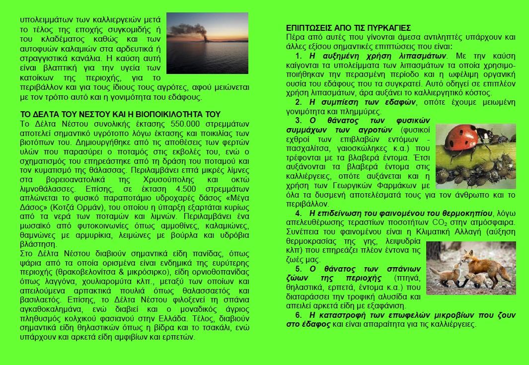 Φυλλάδιο για την αποτροπή της καύσης των καλαμιών στον Νέστο 2η πλευρά